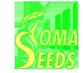 Toma Seeds